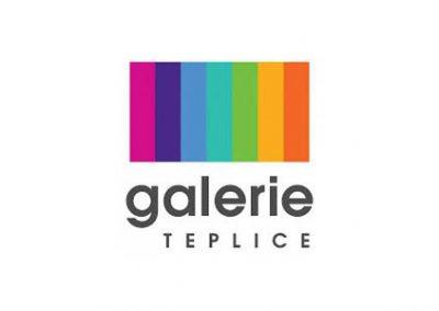 logo-partner-divadlovpytli5